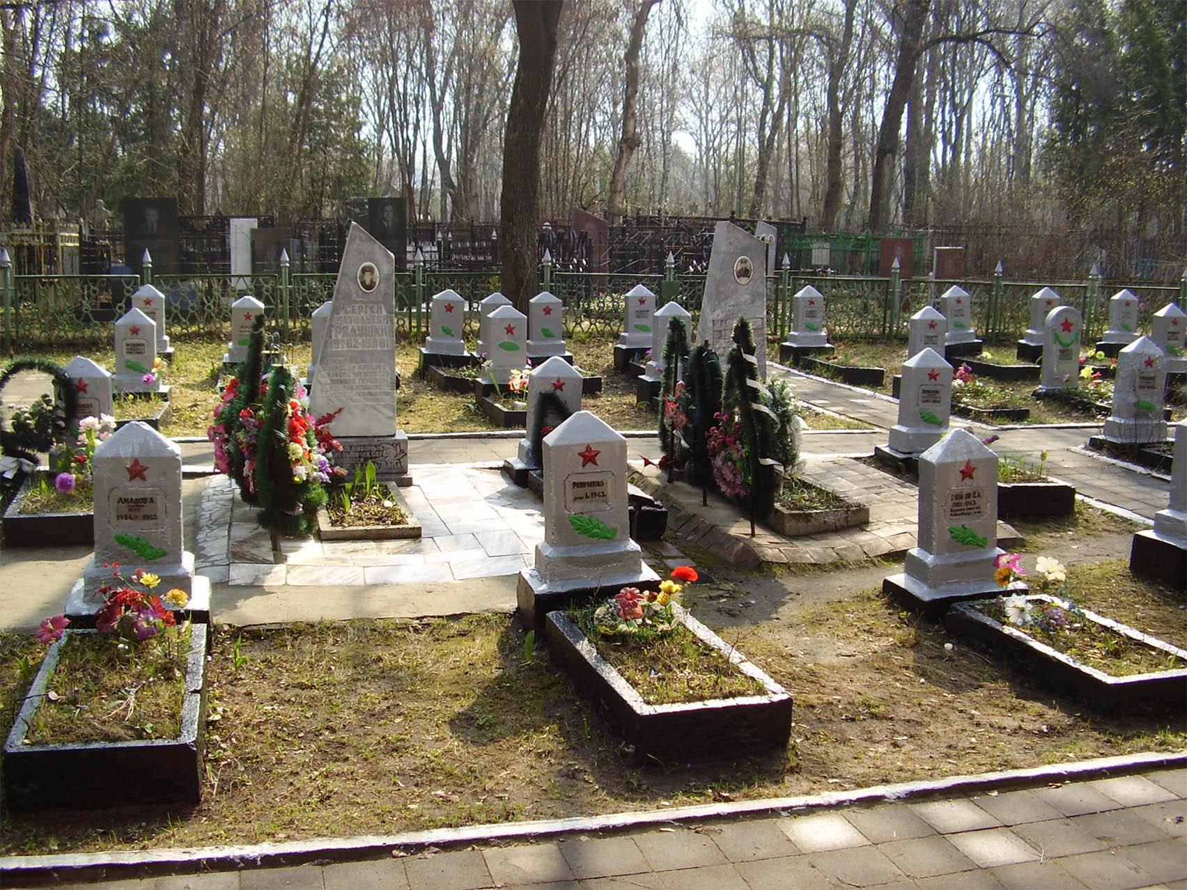 """Глава института РАН предложил дать избирательное право погибшим в ВОВ: """"Таким образом они смогли бы влиять на текущие дела в стране"""" - Цензор.НЕТ 7803"""